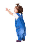 Child stands, isolated on white. Back view Royalty Free Stock Images