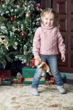 Child stands next to a Christmas tree. Girl holding a soft toy Royalty Free Stock Image