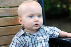 Child Staring - horizontal. A young child, sitting on a park bench, staring off away from the camera. - horizontally framed Stock Image