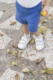 Child stepping on leaves. Color photograph of a child`s feet stepping on fallen leaves on the ground Stock Image