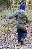 Child with stick in forest. Child with stick walking on forest path , back view Royalty Free Stock Image