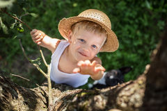 Child with straw hat climbs a tree. Outdoor portrait: Child with straw hat climbs a tree Royalty Free Stock Images
