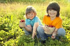 Child with strawberries sunny garden with a summer day.  Royalty Free Stock Photo