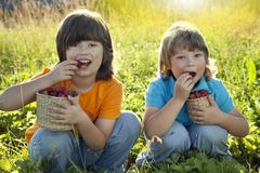 Child with strawberries sunny garden with a summer day.  Royalty Free Stock Images