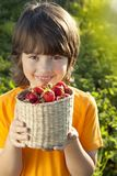 Child with strawberries sunny garden with a summer day Stock Photography