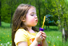 Child in summer Royalty Free Stock Image