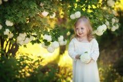 Child summer Stock Photos