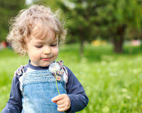 Child in summer park. Child with dandelion in summer park royalty free stock image