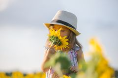 Child and sunflower, summer, nature and fun. Summer holiday. Stock Photography