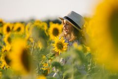 Child and sunflower, summer, nature and fun. Summer holiday. Stock Photo