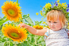 The child in sunflowers. Beautiful little girl and sunflowers Royalty Free Stock Photos