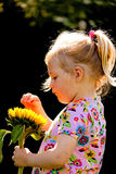 Child with sunflowers in the garden in summer Royalty Free Stock Image