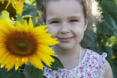 Child in sunflowers. Happy Child on the field with sunflowers stock images