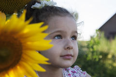 Child in sunflowers Stock Photos