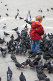Child surrounded by pigeons. Child in red jacket playing with pigeons royalty free stock images