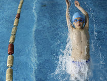 Child swimmer in swimming pool Stock Image