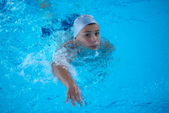 Child on swimming poo Stock Image