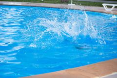 A child is swimming in the pool. At the resort Royalty Free Stock Images