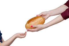 Child takes bread from mother's hands  Royalty Free Stock Photography