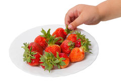Child takes the strawberries stock photography