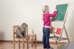 Child taught cat. A girl practicing writing on the blackboard, a cat on her chair watching Stock Photos