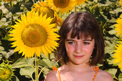 Child thinking in a sunflower field Stock Photography