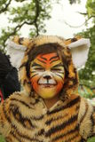 Child in a tiger suit with face painted. Portrait of a child with missing front teeth dressed in a furry tiger suit with a painted stripe face smiling in the Stock Photo