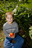 Child with tomato royalty free stock images