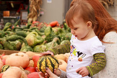 Child Touch Gourd Stock Images