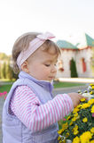 Child Touching Flower Stock Image