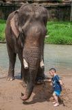 Child traveler feeds the elephant. Chiangmai, Thailand - July 22, 2014:child traveler feeds the elephant in the elephant Elephant Nature Reserve Park in stock photo