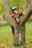 Child on tree Stock Images