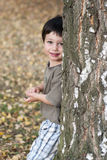 Child and tree. Portrait of an small child boy peeking from behind of a birch tree trunk Stock Photos