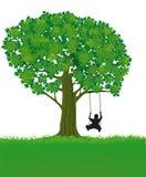 Child and Tree Stock Photo
