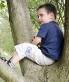 Child on tree Royalty Free Stock Photography
