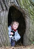 Child in a tree cavity Stock Photo