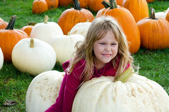 Child tries to pick up giant pumpkin Stock Photo