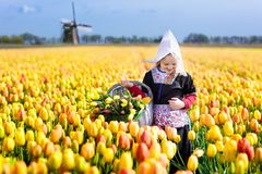Child in tulip flower field. Windmill in Holland. Royalty Free Stock Image