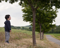 Child under tree in countryside Royalty Free Stock Image