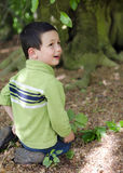 Child under tree in forest Stock Photos