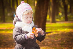 Child walking in autumn park Stock Photography
