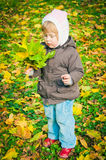 Child walking in autumn park Royalty Free Stock Image