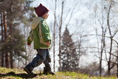 Child walking forest Stock Image