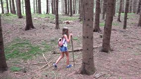 Child walking in forest, kid in mountains, girl playing in camping adventure stock video