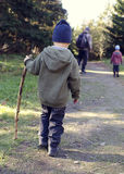 Child walking in forest Stock Image