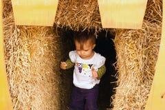 Child Walking Hay stock photo