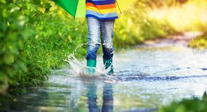Child walking in wellies in puddle on rainy weather. Boy holding colourful umbrella under rain in summer Stock Photo