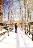 Child Walking on Wood Trail with Snow. A little girl with a winter hat and boots is walking on a wooden nature trail with white snow falling on a rainbow stock photos