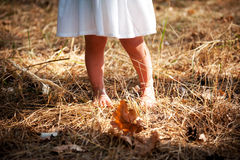 Child walking in the yellow grass Stock Image