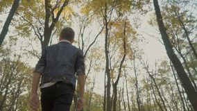 Child walks in the autumn forest. Slowmotion. The camera shoots from down. Pretty boy walks in the light autumn forest. Handsome kid enjoys the leisure at the stock footage